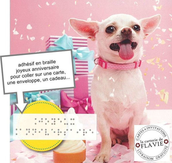 Carte Anniversaire Texte Imprime En Braille
